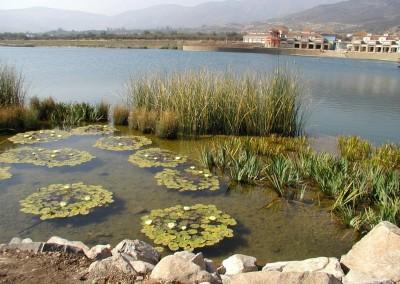 Laguna Recreacional Chicureo Región Metropolitana,